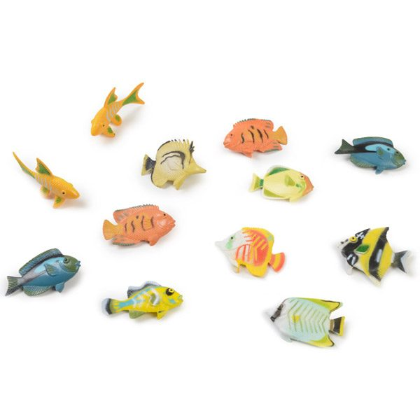 Set of Fish