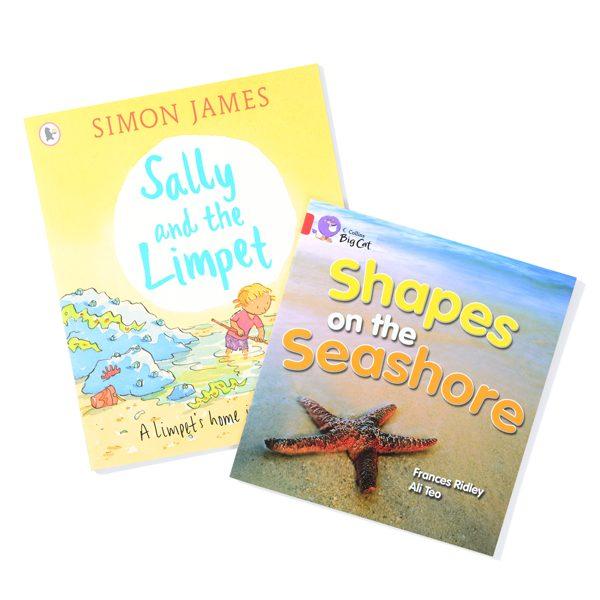 Set of 2 Shells Books