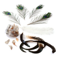 Set of Mixed Feathers