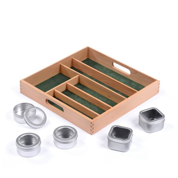 Display Tray Collection Fossils Organiser