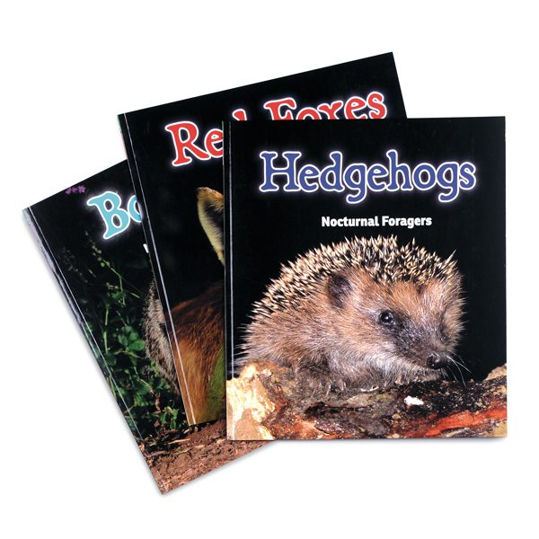 British Wildlife Non-Fiction Book Set