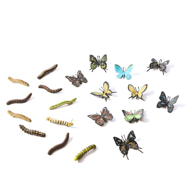 Caterpillars & Butterflies Set