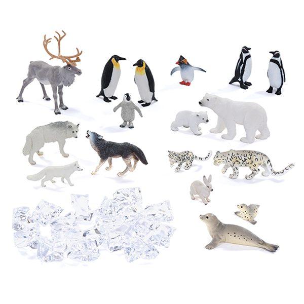 polar life collection