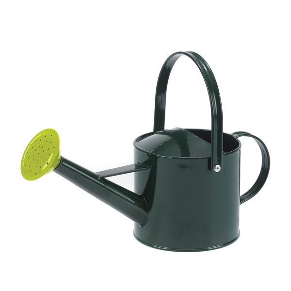 Set of Small Watering Cans