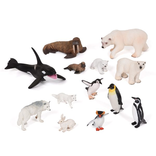 Polar Animals Collection KS1