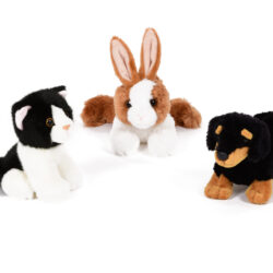 set of pet soft toys