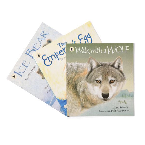 Winter Non-Fiction Book Set