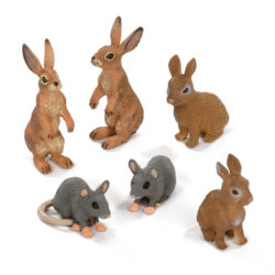 Set of Spring Woodland Animals