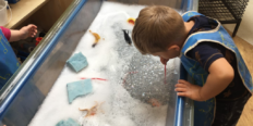 Providing a Language Rich Curriculum in the EYFS