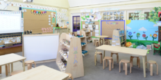The Classroom Environment – Riot of colour vs Peace and Neutrality